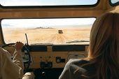 Drive In The Desert