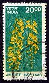 Postage Stamp India 2000 Amaltaas, Cassia Fistula