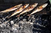 Grilled Fish On Barbecue