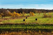 stock photo of hayfield  - Autumnal nature scenery - JPG