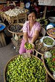 Kamias - Cucumber Tree Fruit