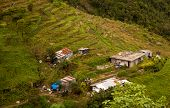 Filipino Mountainside Farm