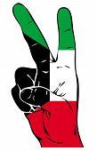 Peace Sign of the Kuwaiti flag