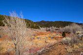 Colorful Santa Fe In Winter
