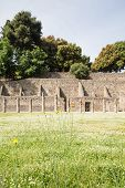 Pompeii Meadow With Ancient Walls In Background