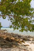 Beach at Koh Phi Phi Krabi Thailand