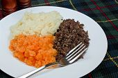 foto of haggis  - Traditional Scottish haggis neeps and tatties also known as a burns supper - JPG