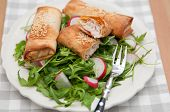 Healthy lunch with arugula salad, red radish and salt strudel with trout
