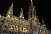 Vienna City Hall At Night