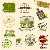 Organic food - Illustration