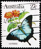 Postage Stamp Australia 1983 Ulysses Butterfly