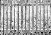 Black-and-white Photo Of An Old Rural Fence