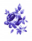 Single violet rose branch watercolor painted
