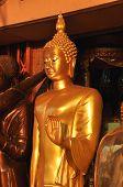 Seno de soporte de cuerpo de Buda