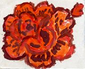 Painted Orange Rose
