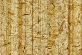 Paper Bamboo Bacground - Nature Texture Tone
