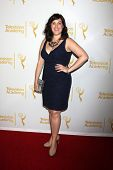LOS ANGELES - AUG 22:  Allison Tolman at the Television Academy�?�¢??s Producers Peer Group Recep