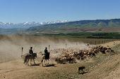Xinjiang scenery