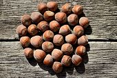 Several Hazelnuts In Shell On A Wooden Background