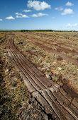 peat bog landscape in Ireland