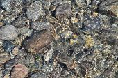 Background Of River Pebbles Under The Clear Water.