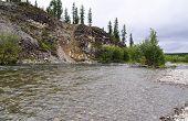 Rocky Coast Of Mountain River