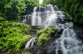 picture of gushing  - Long exposure of Amicalola Falls in Georgia in Summer  - JPG