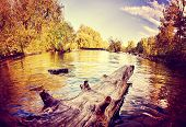 a river flowing in autumn long exposure done with a retro vintage instagram filter effect