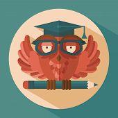 Owl in graduation cap