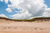 The Sand Dunes Of Brackley Beach