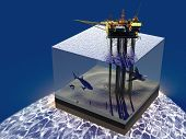 Model sea and oil.