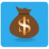 Vector Bag Of Money On Blue Background