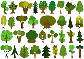 Cute doodle trees, tree doodles set, isolated on white
