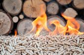 picture of firewood  - Pine pellets infront a wall of firewoods in flames - JPG