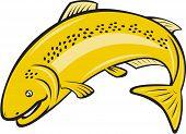 Trout Rainbow Fish Jumping Cartoon