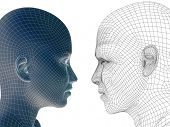 High resolution concept or conceptual 3D wireframe human male or female head isolated on white backg
