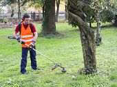 stock photo of trimmers  - portrait of worker with hedge trimmer in a garden - JPG