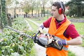image of trimmers  - Man Working With Hedge Trimmer in a garden - JPG