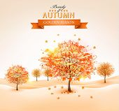 Autumn background with colorful leaves and trees.Vector illustration.