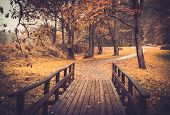 Walkway with wooden rails in an autumn park