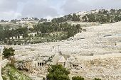 Mount Of Olives In Jerusalem .