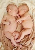 image of identical twin girls  - twins are sleeping and hugging in soft focus