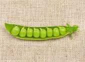 stock photo of bean-pod  - Open peas pods with beans on a burlap background - JPG