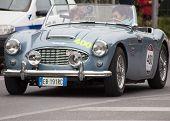 OLD CAR Austin Healey 100/6 BN4 1956 MILLE MIGLIA 2014
