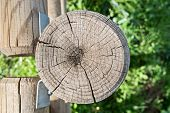 stock photo of stockade  - overhead view of a trunk of a wooden fence
