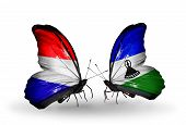 Two Butterflies With Flags On Wings As Symbol Of Relations Holland And Lesotho