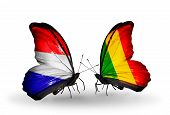 Two Butterflies With Flags On Wings As Symbol Of Relations Holland And Mali