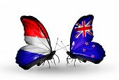 Two Butterflies With Flags On Wings As Symbol Of Relations Holland And New Zealand