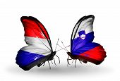 image of holland flag  - Two butterflies with flags on wings as symbol of relations Holland and Slovenia - JPG