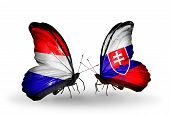 picture of holland flag  - Two butterflies with flags on wings as symbol of relations Holland and Slovakia - JPG